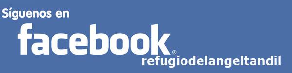 facebook-refugiodelangeltandil